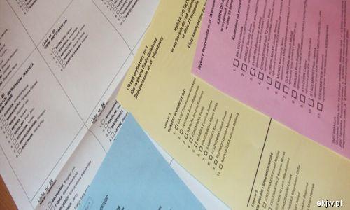 EFHR raises the matter of bilingual voting cards