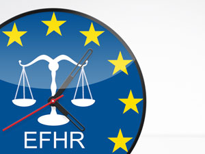 EFHR is looking for a new project coordinator